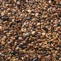 Грунт пестрый (1 кг)