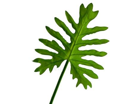 Лист филодендрона искусственный, 89 см