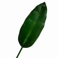 Лист пальмы искусственный, 105 см