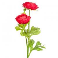 Ранункулюс с двумя цветками искусственный, 50 см. Разные цвета