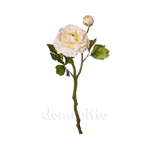 Камелия цена цветок 46