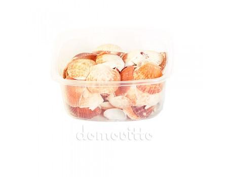 """Ракушки морские """"Гребешки мелкие"""", 80 гр"""