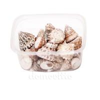 """Ракушки для декора """"Тихоокеанские"""", 100 гр"""