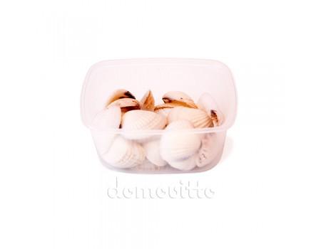 Ракушки декоративные пестрые, 150 гр