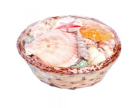 Набор морских ракушек в корзинке, d15 см