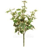 Кустик плюща бело-зеленого, 37 см