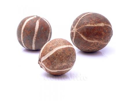 Орехи декоративные экзотические 8-10 см, 3 шт